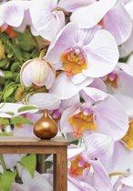 Wallpaper Queen grote bloemen