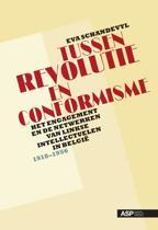 Tussen revolutie en conformisme