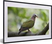 Foto in lijst - Groene smaragdduif zit in een boom fotolijst zwart met witte passe-partout 60x40 cm - Poster in lijst (Wanddecoratie woonkamer / slaapkamer)