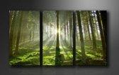 Canvas Schilderijen (Wanddecoratie woonkamer / slaapkamer) - Schilderij Bos Groen Natuur - 160 x 90 cm 3-Luik