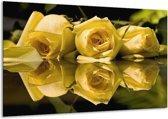 Glasschilderij Roos | Geel, Grijs | 120x70cm 1Luik | Foto print op Glas |  F001549
