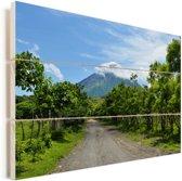 Weggetje richting de vulkaan op het eiland Ometepe Vurenhout met planken 90x60 cm - Foto print op Hout (Wanddecoratie)