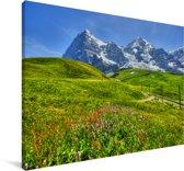 Bloemenweide in de Zwitserse Alpen Canvas 120x80 cm - Foto print op Canvas schilderij (Wanddecoratie woonkamer / slaapkamer)