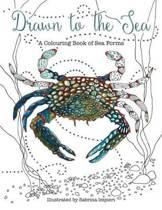 Drawn to the Sea