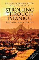 Strolling Through Istanbul