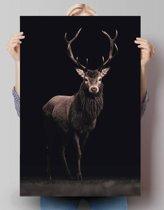 REINDERS Hert - Poster - 61x91,5cm