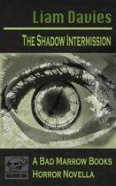 The Shadow Intermission