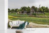 Fotobehang vinyl - Landbouw in oude stad Hoi An Vietnam breedte 390 cm x hoogte 260 cm - Foto print op behang (in 7 formaten beschikbaar)
