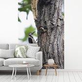 Fotobehang vinyl - Een grote bonte specht voedt zijn jongeren breedte 190 cm x hoogte 280 cm - Foto print op behang (in 7 formaten beschikbaar)