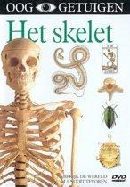 Skelet, Het