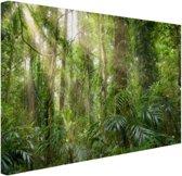 Licht in het woud Canvas 80x60 cm - Foto print op Canvas schilderij (Wanddecoratie woonkamer / slaapkamer)