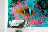 Fotobehang vinyl - Kleurrijk zee-anemoon met een prachtige Clown vis breedte 420 cm x hoogte 280 cm - Foto print op behang (in 7 formaten beschikbaar)