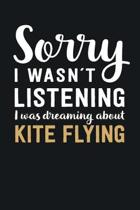 I was Dreaming about Kite Flying