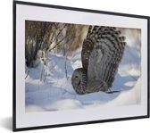 Foto in lijst - Oeraluil vliegt door de sneeuw fotolijst zwart met witte passe-partout klein 40x30 cm - Poster in lijst (Wanddecoratie woonkamer / slaapkamer)