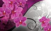Fotobehang Bloemen, Orchidee | Roze, Grijs | 312x219cm
