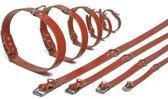 Ipts halsband - Rood 27x10