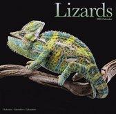 Lizards Calendar 2020