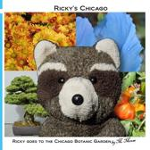 Ricky Goes to the Chicago Botanic Garden