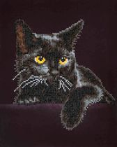 Diamond Dotz ® painting Midnight Cat 28x36 cm - Diamond Painting