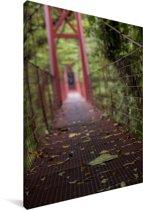 Rood gekleurde brug tussen de bomen van het Bosque Nuboso Monteverde Canvas 120x180 cm - Foto print op Canvas schilderij (Wanddecoratie woonkamer / slaapkamer) XXL / Groot formaat!