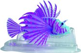 Superfish Fluo Lionfish 12x8x7 cm Blauw
