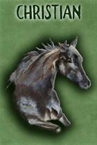 Watercolor Mustang Christian
