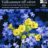 20th Century Swedish Organ Music [sacd/cd Hybrid]