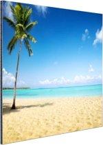 Een kokospalm bij de zee Aluminium 30x20 cm - Foto print op Aluminium (metaal wanddecoratie)