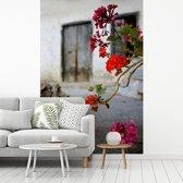 Fotobehang vinyl - Geranium bloemen op straat breedte 215 cm x hoogte 320 cm - Foto print op behang (in 7 formaten beschikbaar)