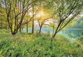 Komar Spring Lake Fotobehang National Geographic 368x254cm