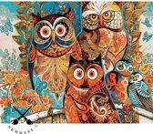 Schilderen op nummer - uil - uilen - 40 x 50 cm - volwassenen