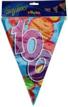 Vlaggenlijn leeftijd 100 jaar