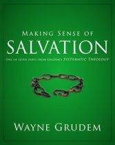 Making Sense of Salvation