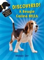 Discovered! a Beagle Called Bella