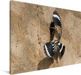 Hop betreedt zijn nest Canvas 60x40 cm - Foto print op Canvas schilderij (Wanddecoratie woonkamer / slaapkamer)