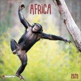 Afrika - Africa Kalender 2020