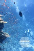 Scuba Dive Log: Diving log book for Beginner Intermediate Experienced Divers