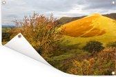 Geel-gekleurde foto van het landschap in het Nationaal park Brecon Beacons Tuinposter 120x80 cm - Tuindoek / Buitencanvas / Schilderijen voor buiten (tuin decoratie)