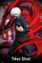 Tokyo Ghoul-Manga-Poster-61x91.5cm.