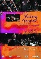 Valery Gergiev:Symphony N (Import)