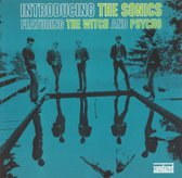 Introducing The Sonics