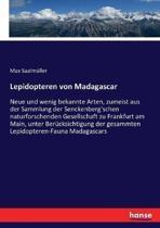Lepidopteren Von Madagascar