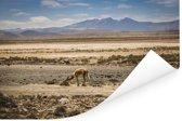 Panorama met uitzicht op het mistige landschap van Arequipa Poster 60x40 cm - Foto print op Poster (wanddecoratie woonkamer / slaapkamer)