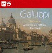 Baldassare Galuppi: Trio Sonatas