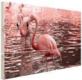 Roze flamingos in water met reflectie Hout 60x40 cm - Foto print op Hout (Wanddecoratie)