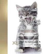 Pr ctica Dibujo - XL Libro de ejercicios 9