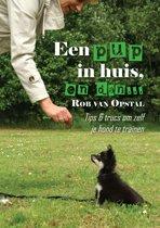 Een pup in huis, en dan... - Tips & trucs om zelf je hond te trainen