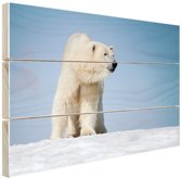 Ijsbeer Hout 80x60 cm - Foto print op Hout (Wanddecoratie)