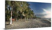 Palmbomen op het strand in Santa Marta Aluminium 160x80 cm - Foto print op Aluminium (metaal wanddecoratie)