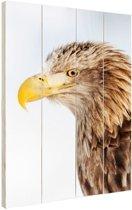 Profiel adelaar Hout 20x30 cm - klein - Foto print op Hout (Wanddecoratie)
